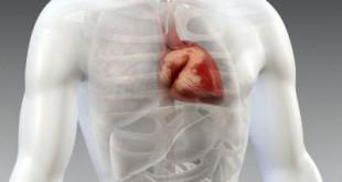 colesterol-y-trigliceridos-enfermedad-cardiaca