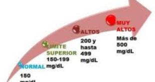 Niveles trigliceridos